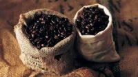 Black Coffy Beans