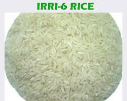 Irri6 Rice