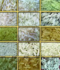 Rice All